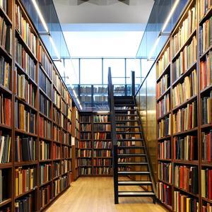 Библиотеки Большой Глущицы